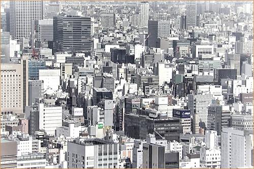 Tokyo Jungle of concrete