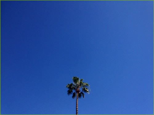 California blue sky