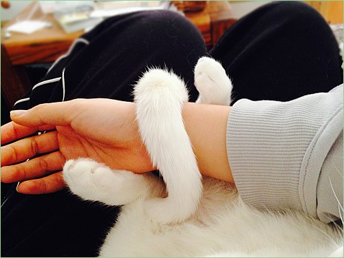 White bracelet