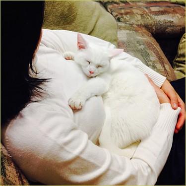 Marshmallow mom