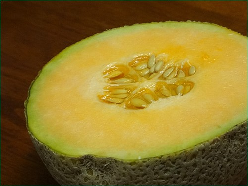 Cantaloupe from Sprout
