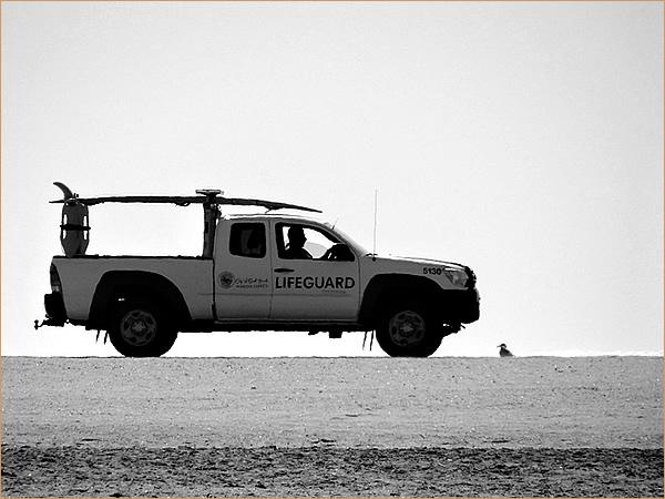 砂浜を横切るライフガードのトラック