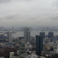 東京タワーか見える灰色の風景