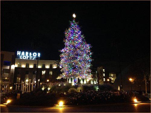 iPhone5cで撮るクリスマスツリー